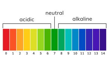 Marion a acidobazická rovnováha